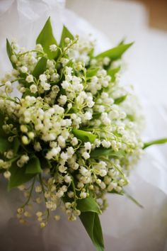 Lily of the Valley bridal bouquet. Lily Of The Valley Bridal Bouquet, Blue White Weddings, Nosegay, Bridal Flowers, Floral Arrangements, Wedding Bouquets, Wedding Styles, Marie, Dream Wedding