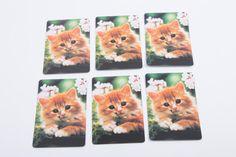 Vintage Orange Kitten playing in White Flowers cards - Set of Six - Scrap Booking Ephemera Card Making by ThePinkRoom