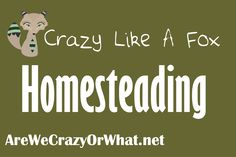 Ideas about how to homestead from AreWeCrazyOrWhat.net