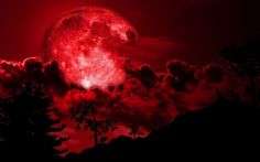 What is a Blood Moon-What is a Lunar Tetrad-What is a Harvest Moon, scoffed at by astronomers,combination of a super moon,appears to approximately bigger Sunflower Tattoo Shoulder, Small Shoulder Tattoos, Wallpaper Animes, Wallpaper Pc, Nebula Wallpaper, Gothic Wallpaper, Pattern Wallpaper, Total Eclipse, Lunar Eclipse