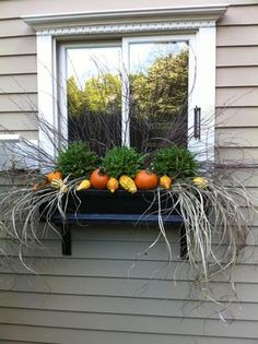 I miss my window boxes... One is going up this year!                                                                                                                                                                                 More                                                                                                                                                                                 More