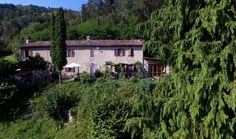 Natuurhuisje 25351 - vakantiehuis in Monastero Bormida