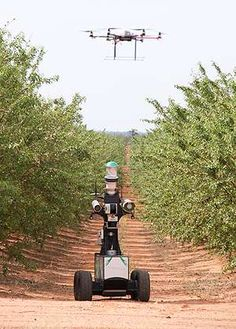Robots working on an almond farm in Australia [The Future of Agriculture] . Drone Technology, Cool Technology, Technology Gadgets, Farming Technology, Precision Agriculture, Drone Rc, Australian Farm, University Of Sydney, 3d Cnc