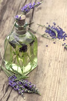 Inhaling or massaging with lavender essential oil has a calming effect which may help to reduce menopausal mood swings and fears.