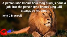 A person who knows how may always have a job, but the person who knows why will always be his boss. / John C Maxwell