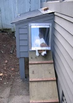 Great idea for the side of the house to let the whoofie come and go #doghouses #dogdoors