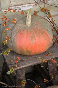 Pumpkin with Bittersweet vine | homeiswheretheboatis.net #PottingShed #fall
