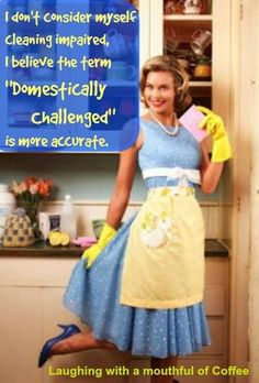 I Donu0027t Consider Myself Cleaning Impaired. I Believe The Term U0027domestically  Challenged. PixieMemeHouse ...