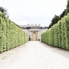 "mrsjuliejones: "" all of this warm weather has me wanting garden strolls and springtime like crazy. (at Gardens of Versailles) "" The Places Youll Go, Places To Go, Palace, Chateau Versailles, Growing Strong, High School Host Club, Like Crazy, Travelogue, Hedges"