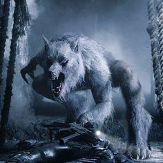 Underworld Werewolf, Underworld Vampire, Underworld Movies, Creatures Of The Night, Weird Creatures, Fantasy Creatures, Mythical Creatures, Werewolf Mythology, Monster Hunter