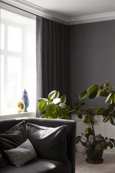 14 easy ways to update your home in 2016: Greenery Looking for a more permanent addition of life into a room, forgo flowers, which eventually die and make a mess, for a new plant. Indoor plants work with any style of interior, the trick is choosing the right plant for you and learning how to care for it.