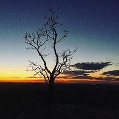 Sunrise from the You Yangs  by @steve.dandrea #destinationgeelong #youyangs #youyangsnationalpark #geelong #nationalpark #sunrise #visitvictoria #exploreaustralia by destinationgeelong http://ift.tt/1JtS0vo