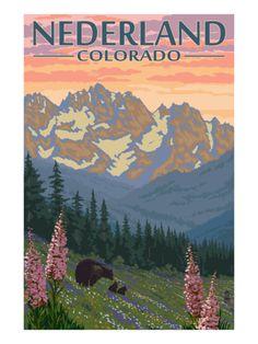 Nederland, Colorado - Bears and Spring Flowers Print by Lantern Press at Art.com
