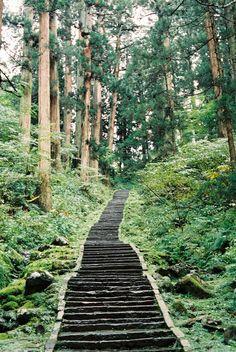 path #oscarsjourney #oscar