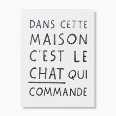 Affiche Cat Manifesto http://pastelshop.fr/shop/affiche-cat-manifesto-audrey-jeanne/