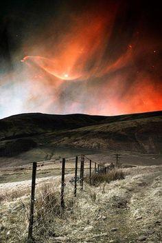 Twitter / BestEarthPix: Orange aurora borealis above ...looks  like a dove