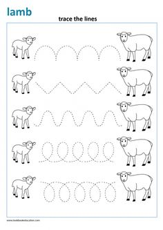 Trace the lines from lamb to sheep. View more spring worksheets at www.lookbookeducation.com Animal Worksheets, Tracing Worksheets, Preschool Worksheets, Community Helpers Worksheets, Prewriting Skills, All About Me Preschool, Tracing Sheets, English Worksheets For Kids, Teacher Books