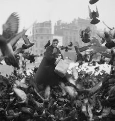 Feeding the pigeons in Trafalgar Square - photo by Henry Grant