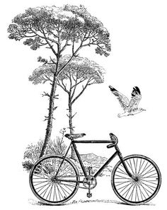 LaBlanche - Foam Mounted Silicone Stamp - Scenic Bicycle: