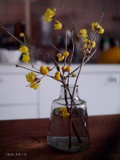 a Day with Flowers Ikebana Flower Arrangement, Flower Vases, Floral Arrangements, Green Flowers, Small Flowers, Pretty Flowers, Bonsai Plants, Small Plants, Planting Flowers