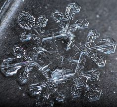 Save a snowflake from Antartica, and give it to my girfriend, or wife, or woman of intrest. Winter Love, Winter Wonder, Snowflake Bentley, Foto Macro, Crystal Snowflakes, Real Snowflakes, Snowflake Photos, Ice Crystals, Ice Ice Baby