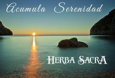 Herba Sacra Aromaterapia y mucho más.