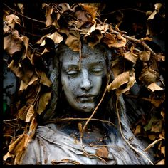 ❥ angel statue in autumn