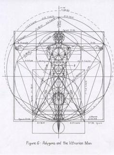 Divine Cannon 4.jpg (515×700)