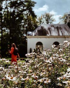 De leukste tips op de Veluwe, geselecteerd door bloggers. #visitveluwe