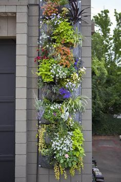 Inspiration For A Vertical Garden With Root Pouch - Garden Decor Herb Garden, Garden Art, Garden Design, Hanging Flower Baskets, Diy Hanging, Hanging Flower Wall, Hanging Plants, Plantation, Garden Spaces