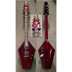 Schecter Coffin Guitar