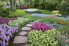 Beautiful backyards improve home designs and increase their values. Lushome shares a collection of attractive landscaping ideas that are simple and inexpensive, perfect for DIY projects. These beautiful backyard landscaping […] Amazing Gardens, Beautiful Gardens, Jardin Decor, Lawn Fertilizer, Garden Images, Backyard Landscaping, Backyard Designs, Landscaping Ideas, Backyard Ideas