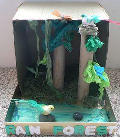Schooling At Home Happenings: Habitat Dioramas