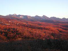 Mt.Yatugatake, Autumn in Sinsyu,Nagano, Japan. 八ヶ岳連峰の秋