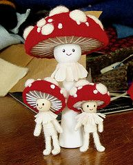 famiglia di funghi