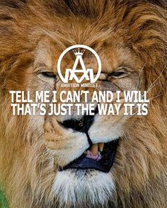 Tag a friend Don't let mediocrity convince you it's impossible! Keep your mindset strong @ambitionmindset @millionxclub Join the community #ambitionmindset