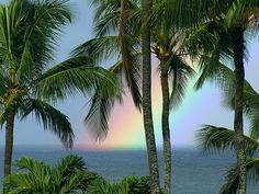 proverbial end of the rainbow #kauai #hawaii