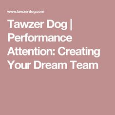 Tawzer Dog | Performance Attention: Creating Your Dream Team michelle pouliot