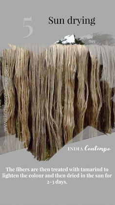 The fibers are then treated with tamarind to lighten the colour and then dried in the sun for days. Fashion Infographic, Style Sheet, Fashion Vocabulary, Kinds Of Fabric, Indian Embroidery, Tamarind, Embroidery Techniques, Fashion Fabric, Incredible India