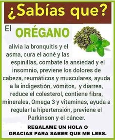 Health Fair, Health Diet, Healthy Juices, Healthy Tips, Healthy Eating, Oregano Tea Benefits, Herbal Remedies, Natural Remedies, Medicine Book