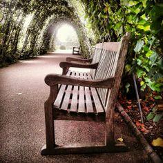#bench#