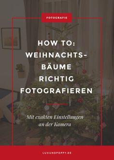 How to: Wie fotografiert man Weihnachtsbaum richtig? Tipps und Tricks mit exakten Einstellungen an der Kamera!