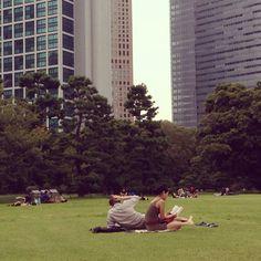 晴れた日の公園で読書