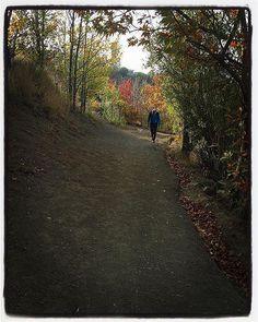 مسير كلكچال -  ٨ صبح امروز  #artgallery #tehran #tehrancity #iran #iranian #autumn #fall#season#nature #naturephotography#naturelovers#instatravel#instatrip#instaworld#instanature#naturegram#instagood#beautiful