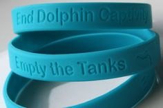 Sea Life Park: Campaign This Weekend Aims to End Dolphin and Whale Captivity There and Everywhere
