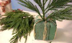 Slik lager du vakre julekranser Plants, Velvet, Creative, Plant, Planting, Planets