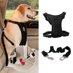 NEW Breathable Mesh Dog Harness Leash With Adjustable Straps Pet Harness With Car Automotive Seat Safety Belt Dog Chest Straps Dog Car Seat Belt, Dog Car Seats, Dog Nails, Best Dog Breeds, Girl And Dog, Dog Harness, Big Dogs, Small Dogs, Dog Accessories