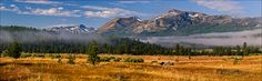 Panoramic Photo: Morning mist & fog lingers over the Hope Valley, near Carson Pass, California