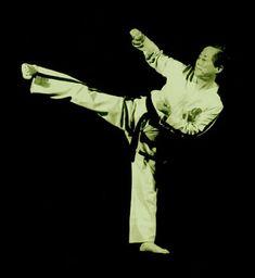 Grandmaster General Choi Hong Hi - the man responsible for Taekwondo