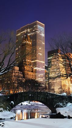 Central Park Winter Night...I can't take credit for this photo. .I just thought it was a great pic! Unknown photographer.